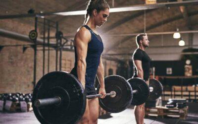Muskelaufbautraining zum Abnehmen und zum Zunehmen